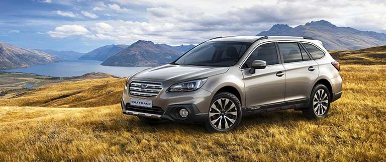 Subaru Outback på äng