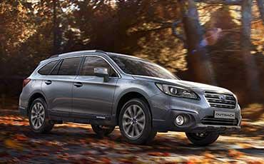 Subaru på skogsväg